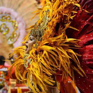 carnival christmas party theme, rio brazil xmas