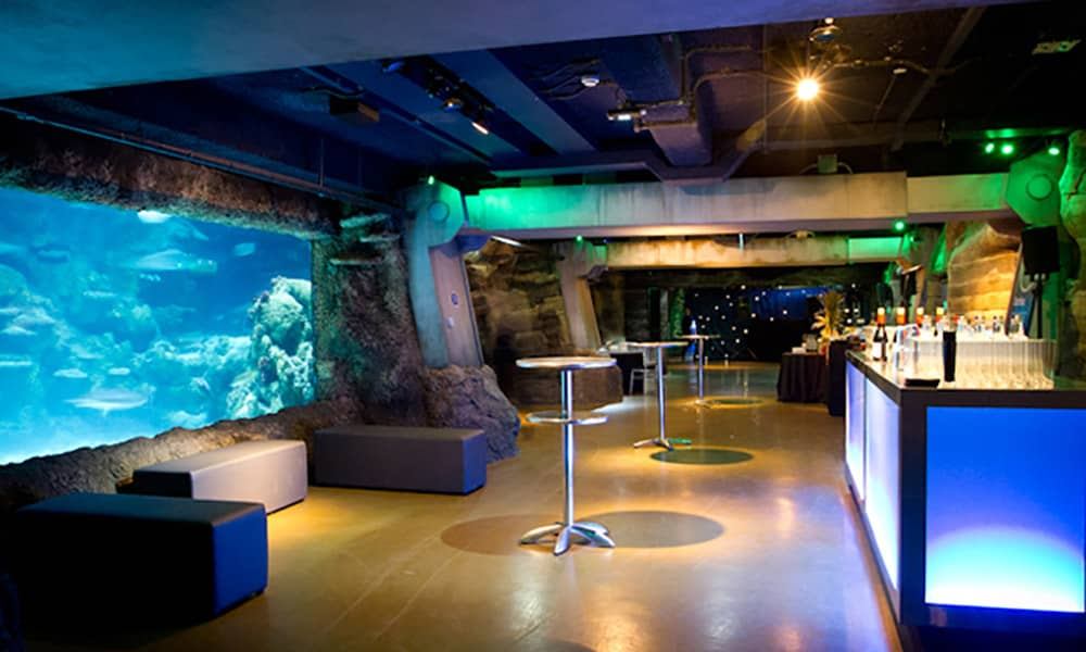 london Aquarium Christmas Party, Christmas at the London sea life centre