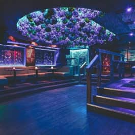 london Mahiki bar christmas party hire