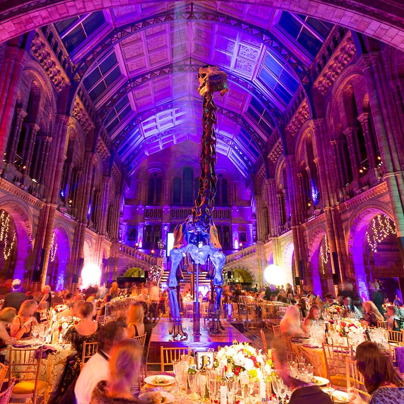 Earth Hall Natural History Museum Venue